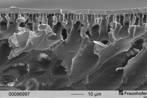 Polymer-Membranen erleichtern Sauerstoffaustausch im Körper