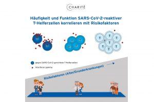 COVID-19-Risikogruppen: Warum das Immunsystem schlechter gegen das Virus ankommt