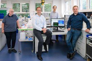 Muskelschwäche bei Intensivstation-Patienten: Forscher finden potenziellen Therapieansatz