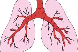 2. Auflage der Nationalen VersorgungsLeitlinie COPD